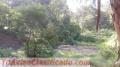 venta-de-terrenos-en-santa-luciafrancisco-morazanhonduras-3.jpg