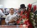 Entrega de regalos especial con maravillosos mimos!!!