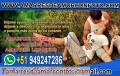 AMARRES DE AMOR ETERNO, TAROT, VIDENCIA +51 949247286