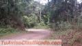 Terrenos en Santa Lucia,El Callejon
