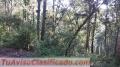 Venta de terrenos en Santa Lucia,Sabana Del Lolo