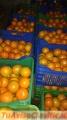 Venta de Tangelo y otras frutas al por mayor y menor en Lima