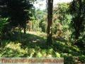 Vendo terreno en Siquinala,Escuintla  de 85 Mts. de largo Por 35 Mts. de ancho, el terreno