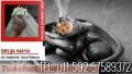 AMARRES Y CURACIONES INMEDIATAS 011-502-57589372