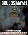 brujos-mayas-no-mas-enganos-ni-falsas-esperanzas-0050250552695-0050246920936-1.jpg
