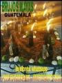 HECHIZOS REALES DE SALUD.DINERO Y AMOR..(0o502)50552695-(00502)46920936