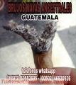 """PARA AMORES VERDADEROS,LECTURA DEL TABACO DE LOS """"BRUJOS MAYAS"""".(00502)50552695"""