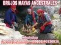 """MAESTROS """"BRUJOS MAYAS""""TRIUNFARAS EN TU VIDA.(011502)50552695-(011502)46920936"""