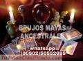 """""""BRUJOS MAYAS""""Y """"TAROT"""" PODER PARA QUE DISFRUTES DEL AMOR.(011502)50552695"""