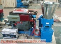 Peletizadora 260 mm Diesel Mixta 35 HP
