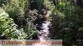 Terreno plano con bosque y río a 25 minutos de Valle de Bravo