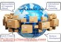 Asesoría en Comercio Exterior - Desarrollo de importaciones y Exportaciones
