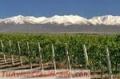 Bodega de vinos en montañas equipada vde.intermediario al contado