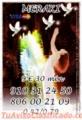 806 002 109 LAS 24 HORAS VIDENTE  TAROTISTA