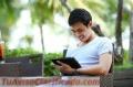Cómo Ganar En Promedio 6500 Dólares Al Mes Como Asistente Virtual