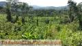 Alquilo terreno para torre comunicacion poblacion tres kilometros 600.00 tel 50766151584