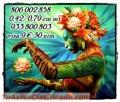 Tarot económico 806 -002-858 - 0,42/0,79 cm y visa 933 800 803