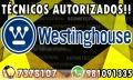 Mantenimiento White – Westinghouse 981091335