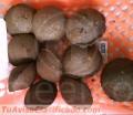 Prensa Meelko para hacer carbon en briquetas 20 Toneladas MKBC20