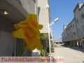 espectacular-townhouse-de-161m2-en-exclusivo-conjunto-residencial-2445-5.jpg