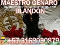 AMARRES DE AMOR SIN CONSECUENCIAS MISMO SEXO LGTBI. MAESTRO GENARO BLANDON