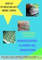 ADHESIVOS FULL COLOR ALTA O STANDAR LLAMA AL: 42337859