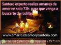 HECHIZOS DE AMOR EN 48 HORAS