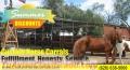 Custom Horse Corrals