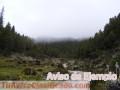 Parque Nacional Sierra Nevada, Mérida Venezuela
