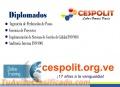 Diplomado Online en Gerencia Exitosa de Proyectos