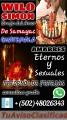 Verdadero Brujo De Samayac Guatemala Wilo Simon