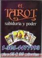 videntes-directas-llama-1-305-4477993-visas-6-10-minutos-1.jpg