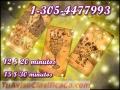 Videntes directas  llama 1-305-4477993 visas 6  $10  minutos