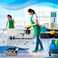 Arlington Heights Cleaning Service