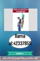 Mochila Promocinal llama al :42337859
