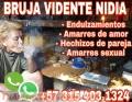 BRUJA NIDIA EXPERTA EN TODA CLASE DE TRABAJOS CON RESULTADOS GARANTIZADOS 3154031324