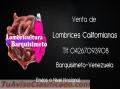 Lombrices Rojas Californianas en Venezuela... tlf 04267093908..