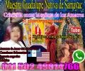 Maestra Curandera y Conocedora de la Medicina Natural whtasapp 011 502 49814766
