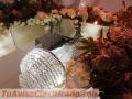 Alquiler de lámparas para eventos