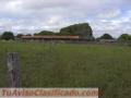Fazenda dupla aptidão com 3.500 hectares,excelente para plantio de grãos no País Brasil