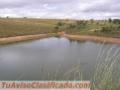 fazenda-de-3-500-hectares-tendo-1100-metros-de-altitude-para-plantio-de-graos-no-brasil-1.jpg