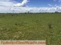 fazenda-de-3-500-hectares-tendo-1100-metros-de-altitude-para-plantio-de-graos-no-brasil-5.jpg