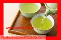 Venta de Alta calidad Shen Pu'er de Yunnan bulang camellia