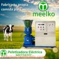 PALETIZADORA ELÉCTRICA MKFD230C