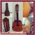 Se vende Guitarra Clásica Marca Alhambra Traida de España