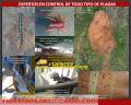 Fumigaciones Proteger C.A. Eliminamos Roedores e Insectos