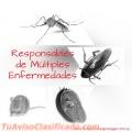 Exterminamos Insectos y Roedores en Oficinas de Maracaibo