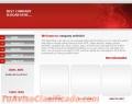 creacion-de-sitios-web-para-todo-tipo-de-negocio-4.jpg