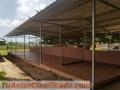 Complejo Deportivo en Santo Domingo Este