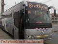 alquiler-de-buses-minibuses-coaster-sprinter-vans-3127-4.jpg